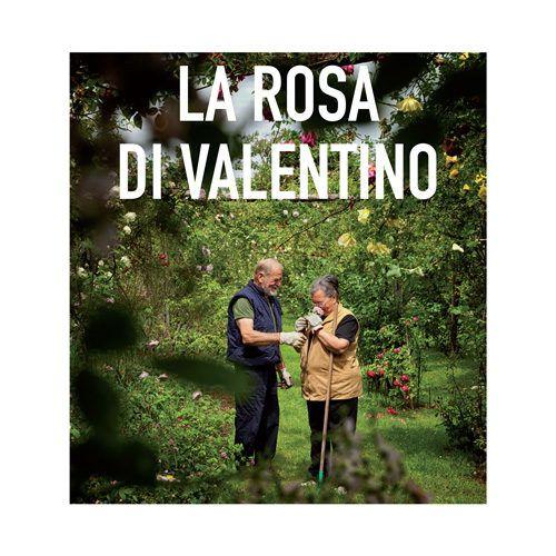 DVD La Rosa di Valentino
