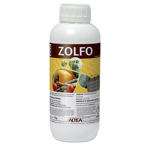 Altea Zolfo