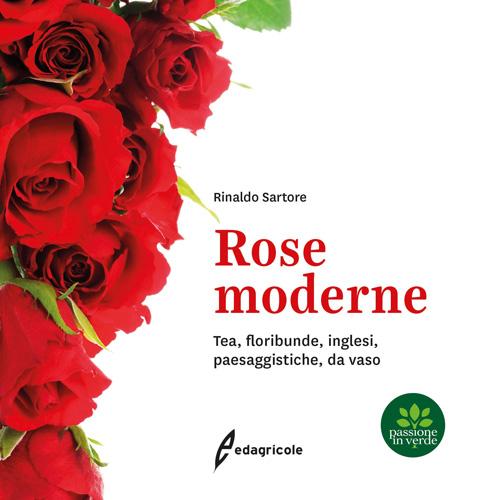 Libro Rose Moderne Copertina